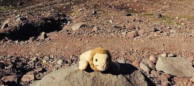 Photo of Bimba perde il suo peluche, la comunità montana si mobilita per ridarle il sorriso