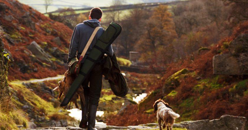 caccia, ambiente, attualità