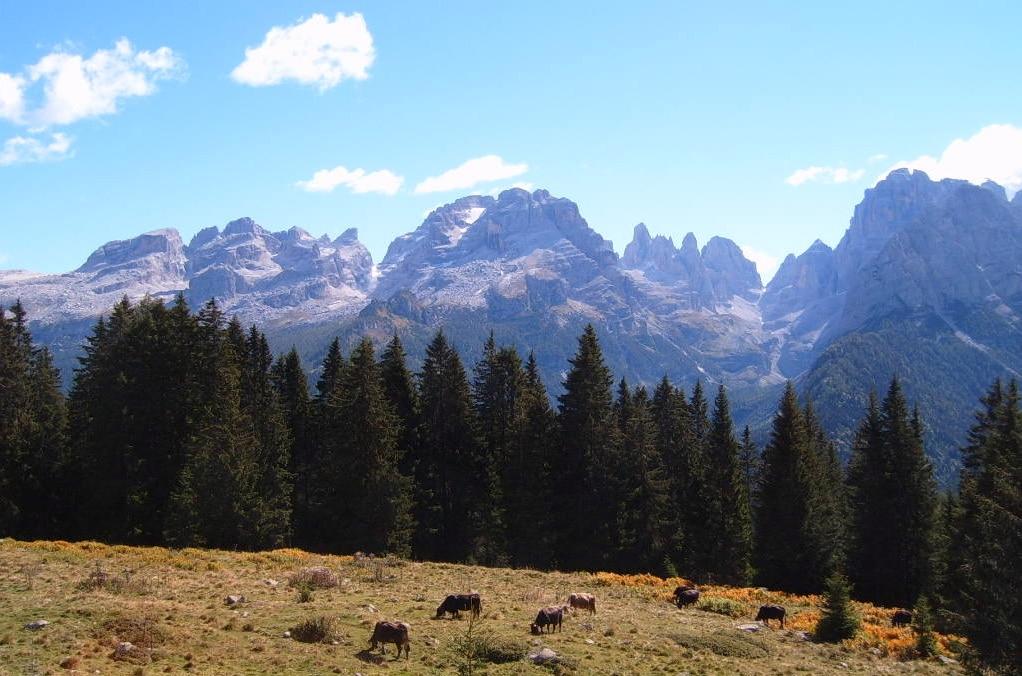Dolomiti, Valerio Bertoldi