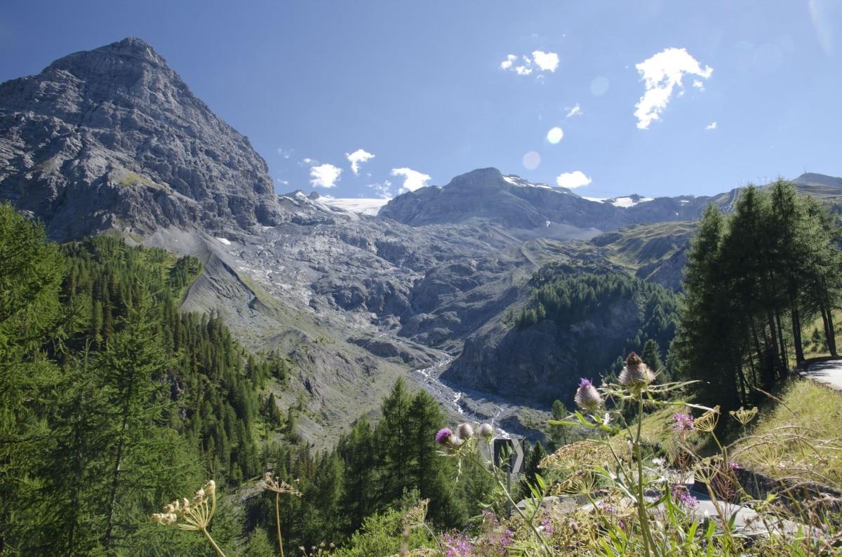 Photo of A settembre l'abbraccio collettivo da record ai giganti verdi delle Alpi