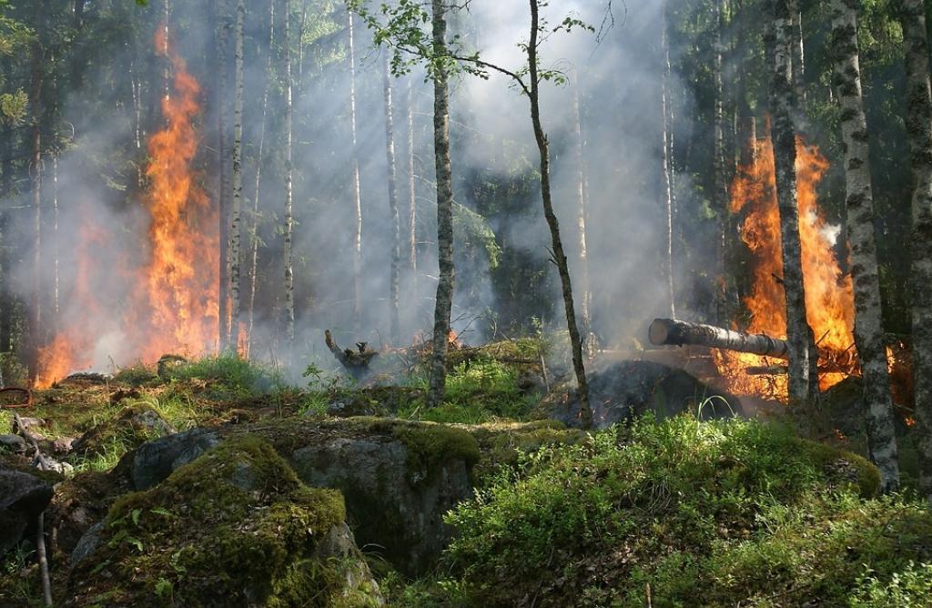 """Photo of Valle d'Aosta, la Regione decreta lo stato di """"grave pericolosità d'incendio boschivo"""""""