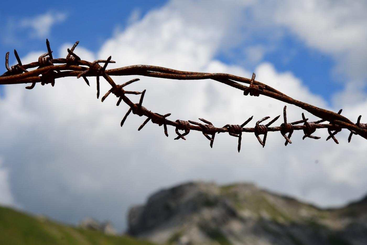 Photo of Grande Guerra, un centenario deludente – di Stefano Ardito