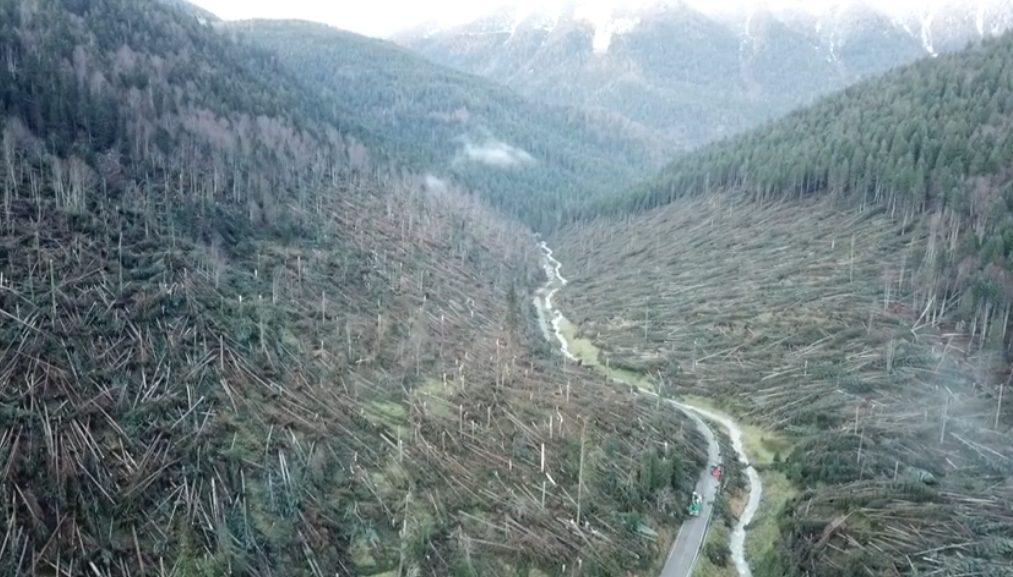 """Photo of """"Mai zede"""", l'orgoglio della montagna"""
