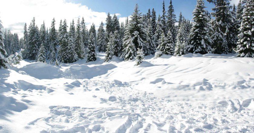 mete, neve, alpi