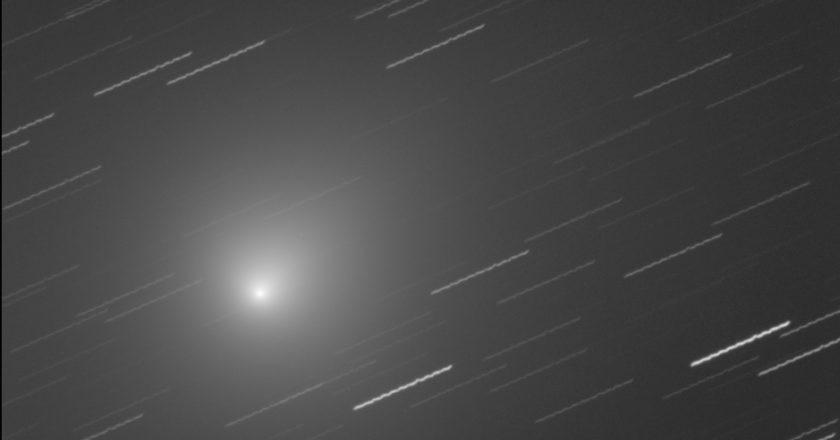 cometa, 46P/Wirtaten, perielio, perigeo, astronomia, Natale, INAF