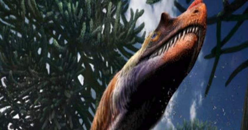 ceratosauro, giurassico, dinosauri, Saltriovenator zanellai, predatore, fossili, paleontologia