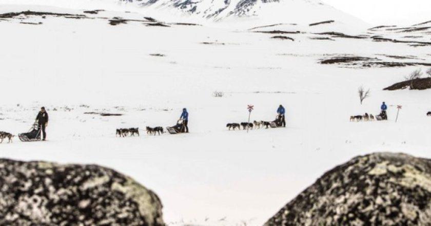 Fjallraven Polar, Lorenzo Bertolotto, musher