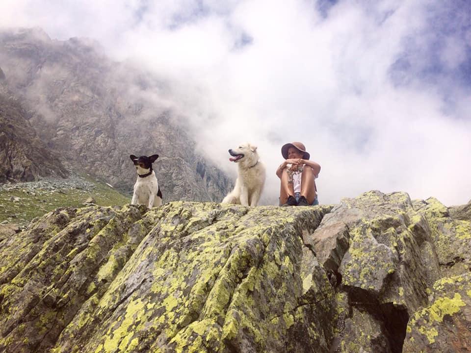 gallery, quattro zampe, cani, fotografia, follower, montagna.tv