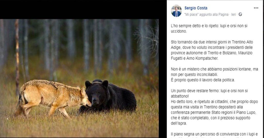 Sergio Costa, Ministero dell'Ambiente, Piano Lupo, tutela