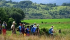trekking, terre mutate, cammini