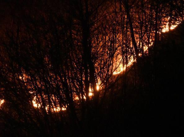 Photo of Incendio del Monte Berlinghiera. Multa da 13 milioni di euro per un barbecue sfuggito di mano