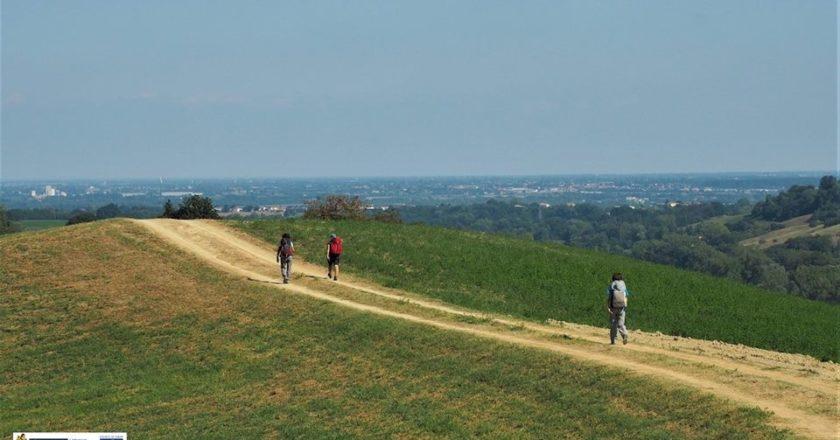 cammini, terre di mezzo, sondaggio, cammino di santiago, via francigena