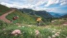 Mountain Bike a Pampeago  (foto @ F. Modica)