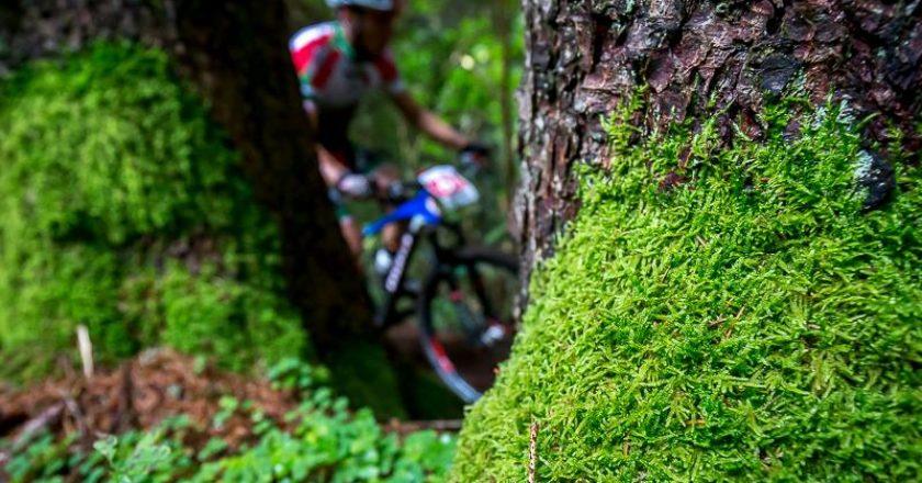 sentieri, bici, val di fassa