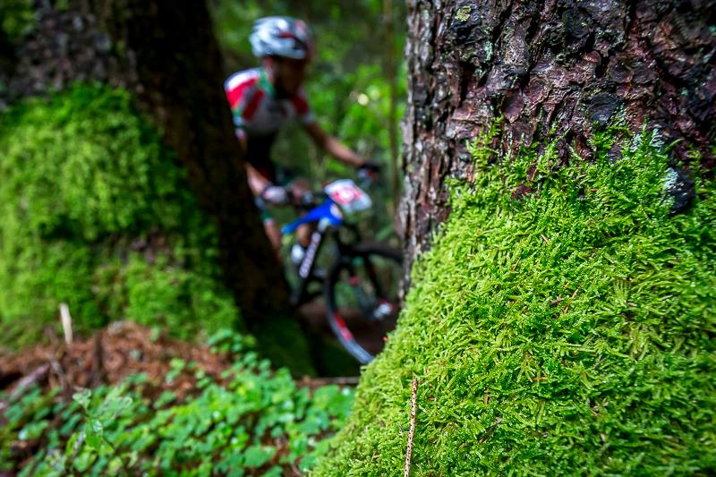 Photo of Trentino-Alto Adige. Mancano i cartelli sui sentieri vietati alle bici