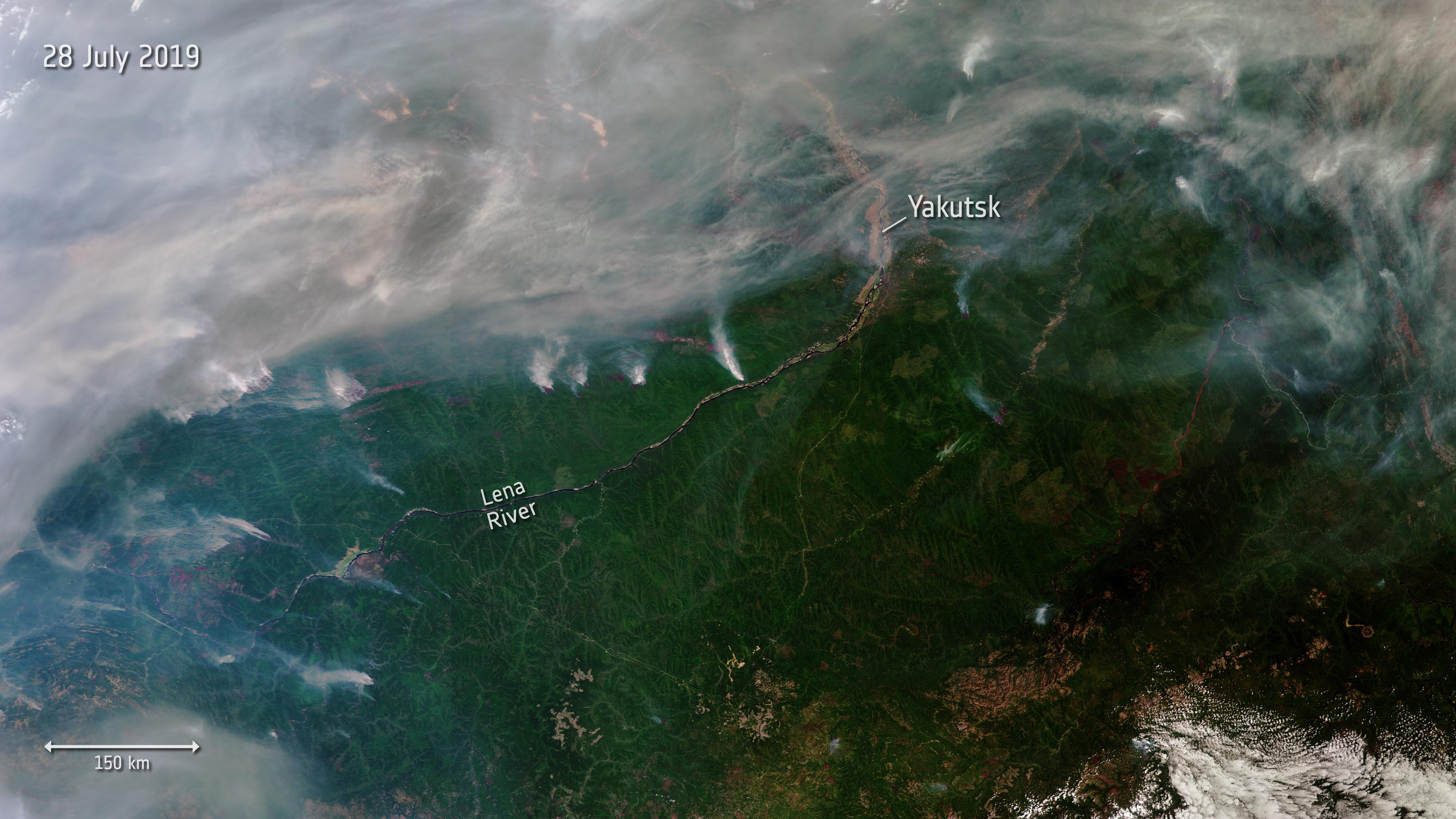 siberia, incendi, foreste, esa