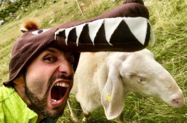 selfie con pecora
