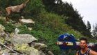 Matthew Disney durante la salita sul Monte Bianco con il suo vogatore - Foto FB @Disney RM