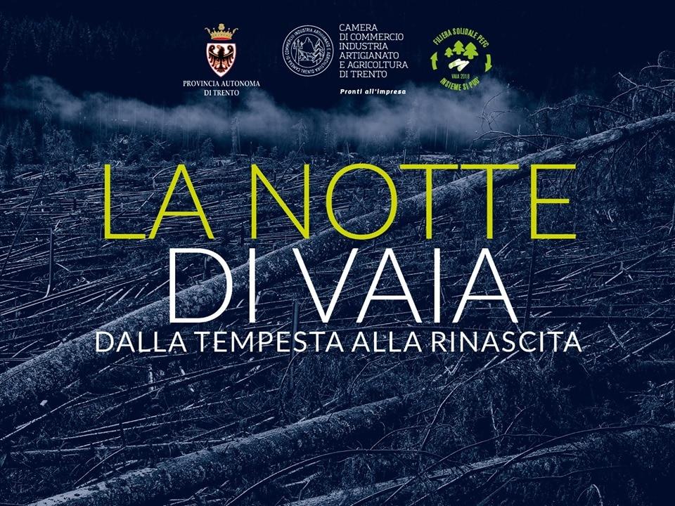 """Photo of """"La notte di Vaia"""". Un docufilm racconta la devastazione delle foreste dolomitiche a un anno dalla tempesta"""