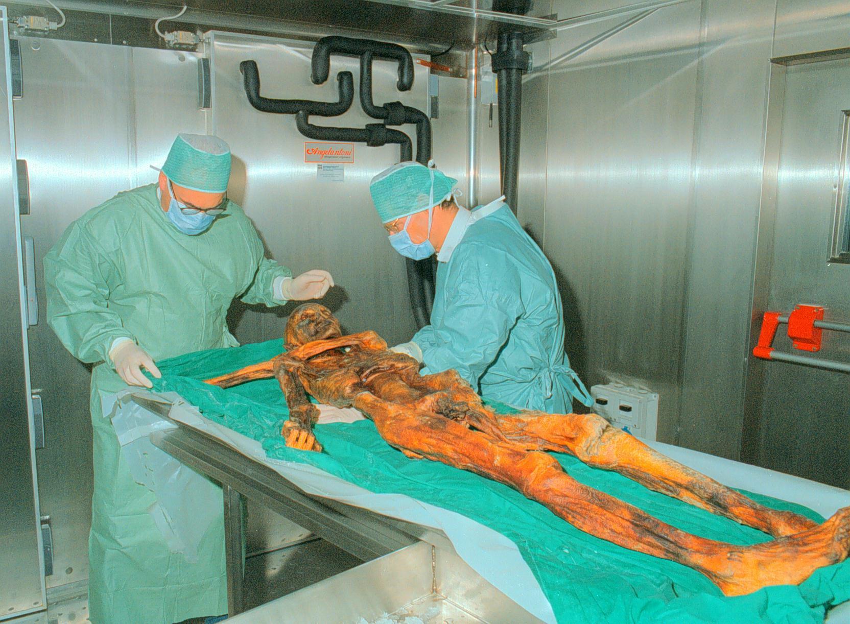 Photo of L'ultimo viaggio di Otzi ricostruito attraverso lo studio dei muschi