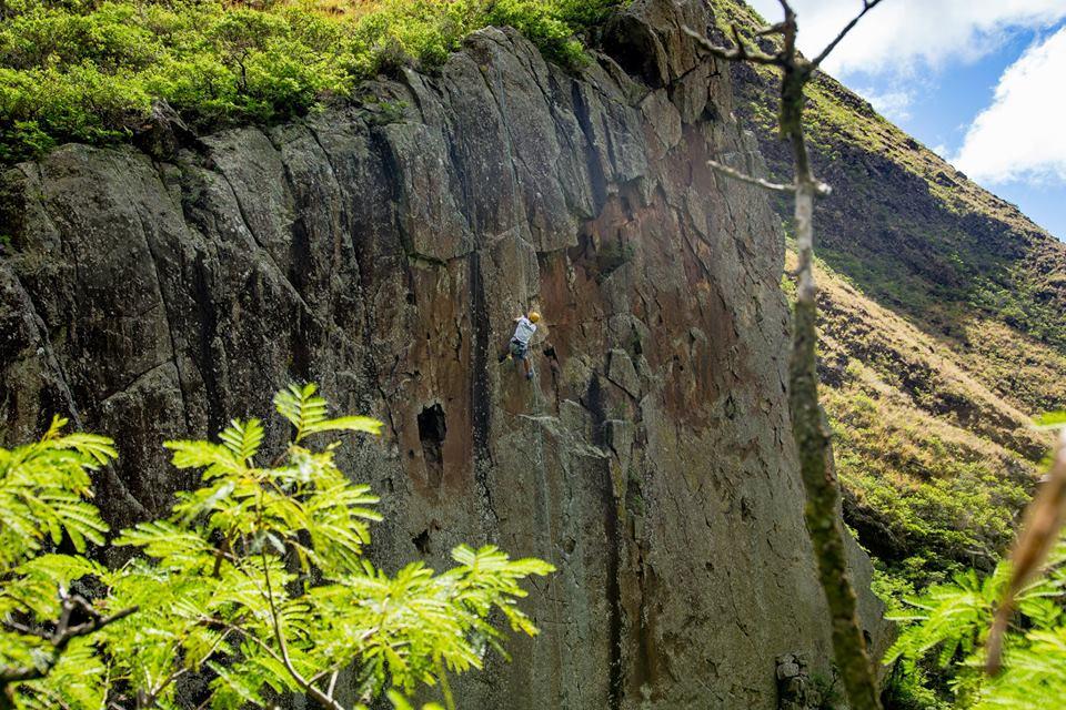 Photo of Hawaii. Divieto di arrampicata sulle scogliere di Maui in difesa delle piante native