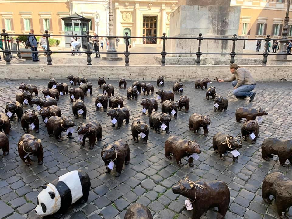 Photo of Cinquanta orsetti marsicani a Montecitorio per un flashmob del WWF