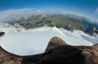 victor, ghiacciai alpini