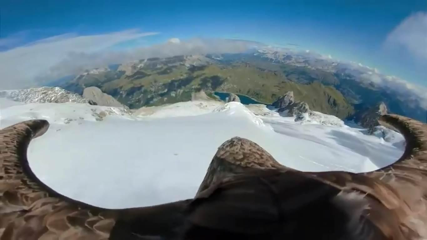 Photo of Un'aquila in volo sui ghiacciai alpini per mostrare gli effetti del cambiamento climatico