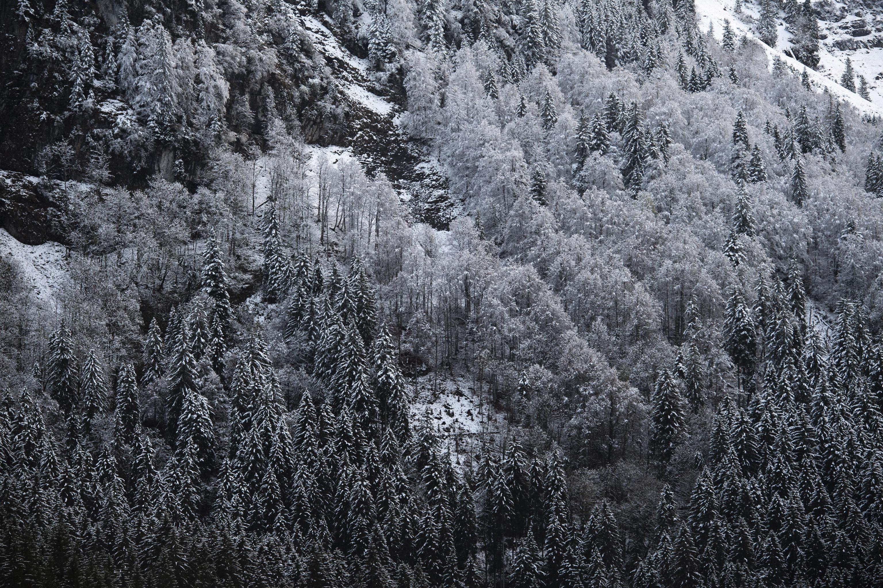Photo of Un'altra settimana di neve sulle Alpi e Appennino