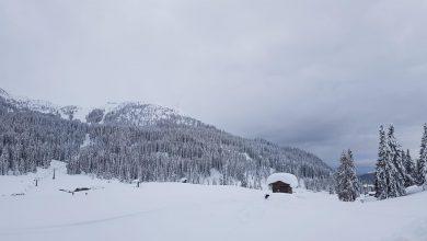 Photo of Domenica di neve abbondante sulle Alpi