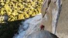 Alex Honnold su El Capitan - Foto Instagram Alex Honnold