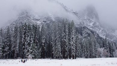 Photo of Anche a Yosemite è arrivata la neve