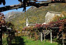 Photo of Il vino e la montagna