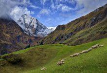 Photo of Anche la transumanza, patrimonio dell'Appennino e delle Alpi, nel patrimonio dell'UNESCO