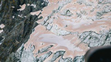Photo of Nuova Zelanda. I ghiacciai diventano rosa a causa degli incendi