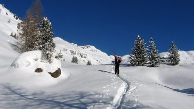 Photo of Due itinerari per scoprire la Val di Fiemme – Speciale Outdoor Inverno