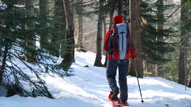 Photo of Due itinerari per scoprire il Piemonte del Nord in inverno – Speciale Outdoor Inverno