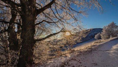 Photo of Meteo. Giorni della merla dai toni poco invernali
