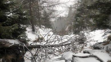 Photo of Valle d'Aosta: bimbo cade in un canalone fuoripista. Intervento complicato del Soccorso Alpino