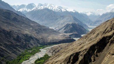Photo of La biodiversità delle montagne, segui domani il webinar live