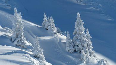 Photo of Alpi. Dopo la neve cresce il pericolo valanghe
