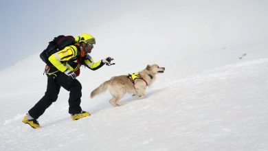 Photo of Soccorso Alpino: 2019 da record con oltre 10mila interventi