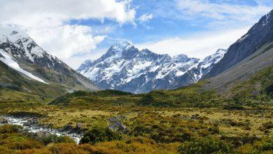 Photo of Giornata Internazionale della Biodiversità: la natura è la soluzione
