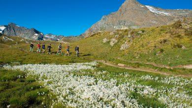 Photo of Oltre 100 escursioni gratuite con le Guide del Parco Nazionale Gran Paradiso