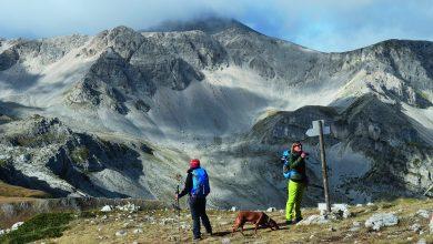 Photo of Un anno sui sentieri dei Monti Marsicani e Sirente-Velino