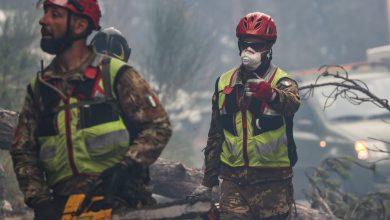"""Photo of Boschi dell'Abruzzo devastati dagli incendi. Ministro Costa: """"Quasi certa matrice dolosa"""""""