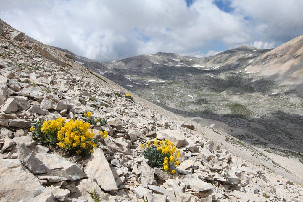 parco nazionale della majella, educazione alla montagna