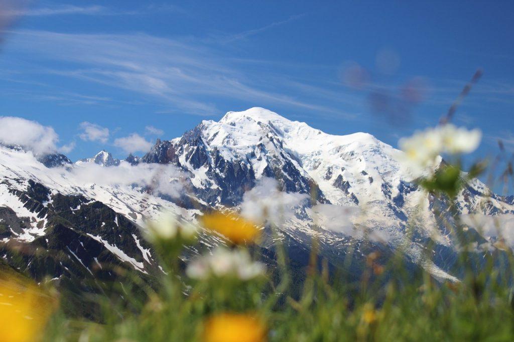 monte bianco, habitat