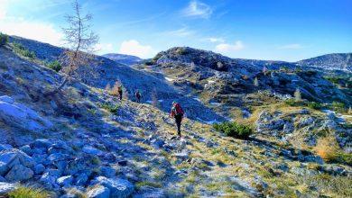 Photo of Pieve di Cadore. Escursionista scivola e precipita per 200 metri