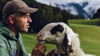 Photo of Il Green Friday di Salewa sostiene i pastori della Val di Funes